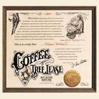 Rent Mother Nature Coffee Tree Lease