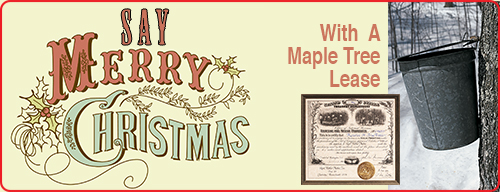 Christmas-Promo-Maple